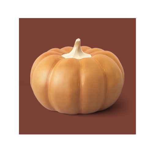 Medium Ceramic Pumpkin Honey - Threshold™