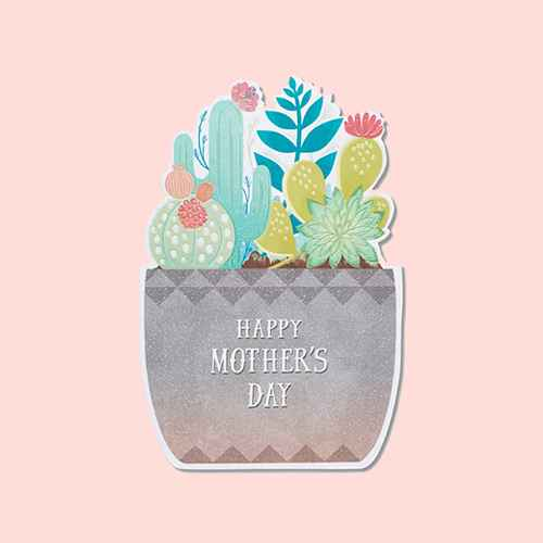Mother's Day Card Succulent