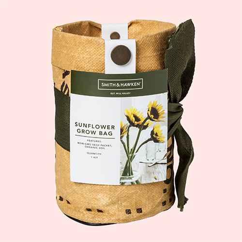 Grow Kits Sunflower - Smith & Hawken™