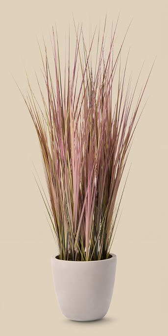 4' Potted Grass - Lloyd & Hannah