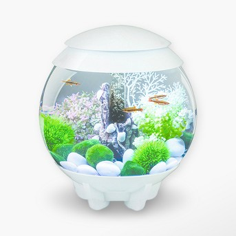 biOrb HALO 15 with MCR Lights Aquarium