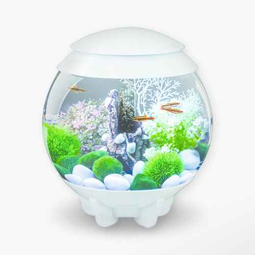 biOrb HALO 15 with MCR Lights Aquarium