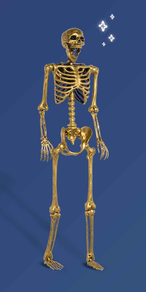 Posable Lifesize Skeleton Gold XL Halloween Decorative Mannequin - Hyde & EEK! Boutique™