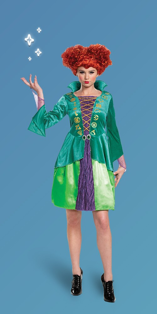 Adult Disney Hocus Pocus Winifred Sanderson Halloween Costume Dress S (4-6)