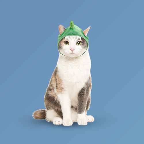 Dino Hat H&E Cat Costume - Hyde & EEK! Boutique™