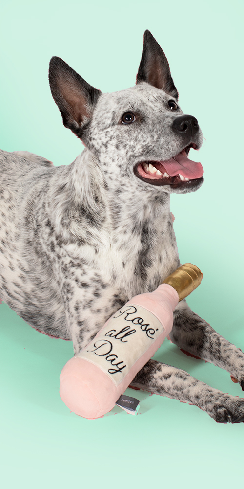 PetShop by Fringe Studio Rose All Day Dog Toy
