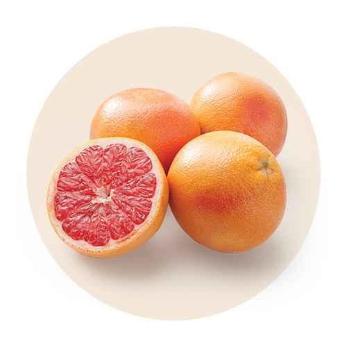 Red Grapefruit - Each