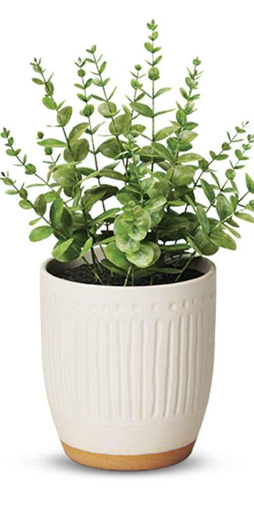 "4"" Textured Ceramic Planter White - Opalhouse™, 9"" x 6"" Artificial Boxwood Arrangement - Threshold™"