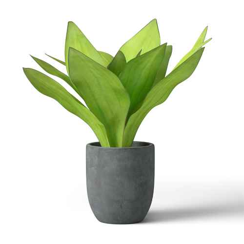 Faux Long Leaves in Gray Pot Green - Project 62™