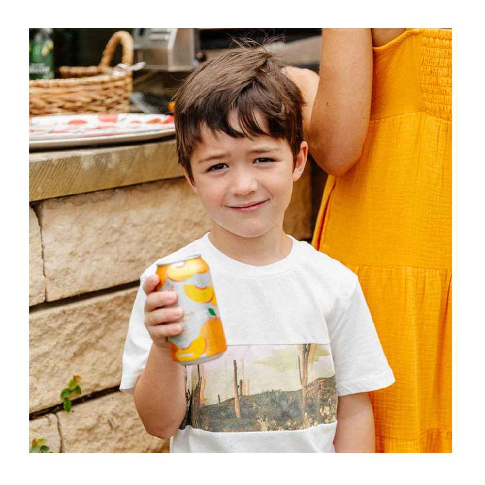Ginger Peach Sparkling Water - 12 fl oz Can - Good & Gather™, Boys' Cactus Graphic Short Sleeve T-Shirt - art class™ Cream XS