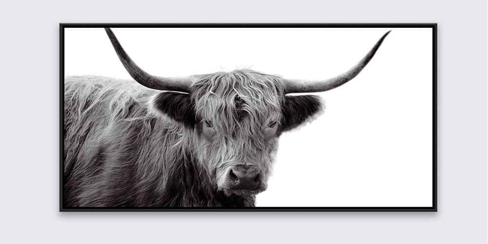 "24.25"" x 48.25"" Highland Cow Framed Wall Canvas Black/White - Threshold™"