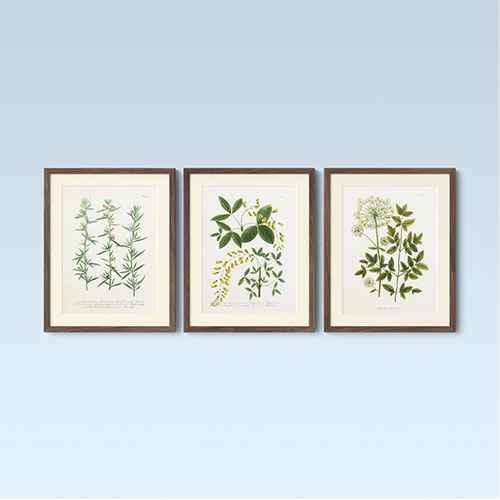 "(Set of 3) 16"" x 20"" Wall Botanicals Green - Threshold™"
