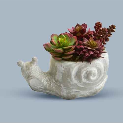 "7"" x 6"" 2pc Artificial Succulent Plant in Elephant and Snail Planter Set - Nearly Natural"