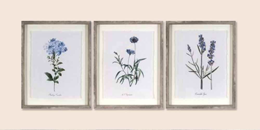"(Set of 3) 16""x20"" Framed Vintage Botanicals Decorative Wall Art - Threshold™"