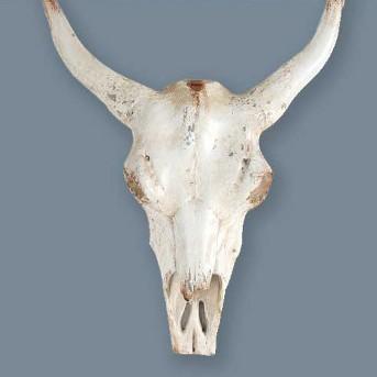 """18.5"""" Faux Steer Head Decor White - A&B Home"""