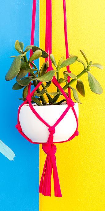 Brit + Co® Make a Macrame Planter Kit