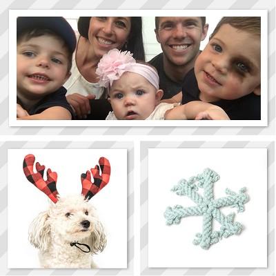 holiday spirit dog antlers and decor