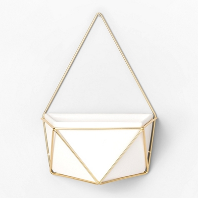 Succulent Wall Geometric Hanging White/Gold - Project 62™