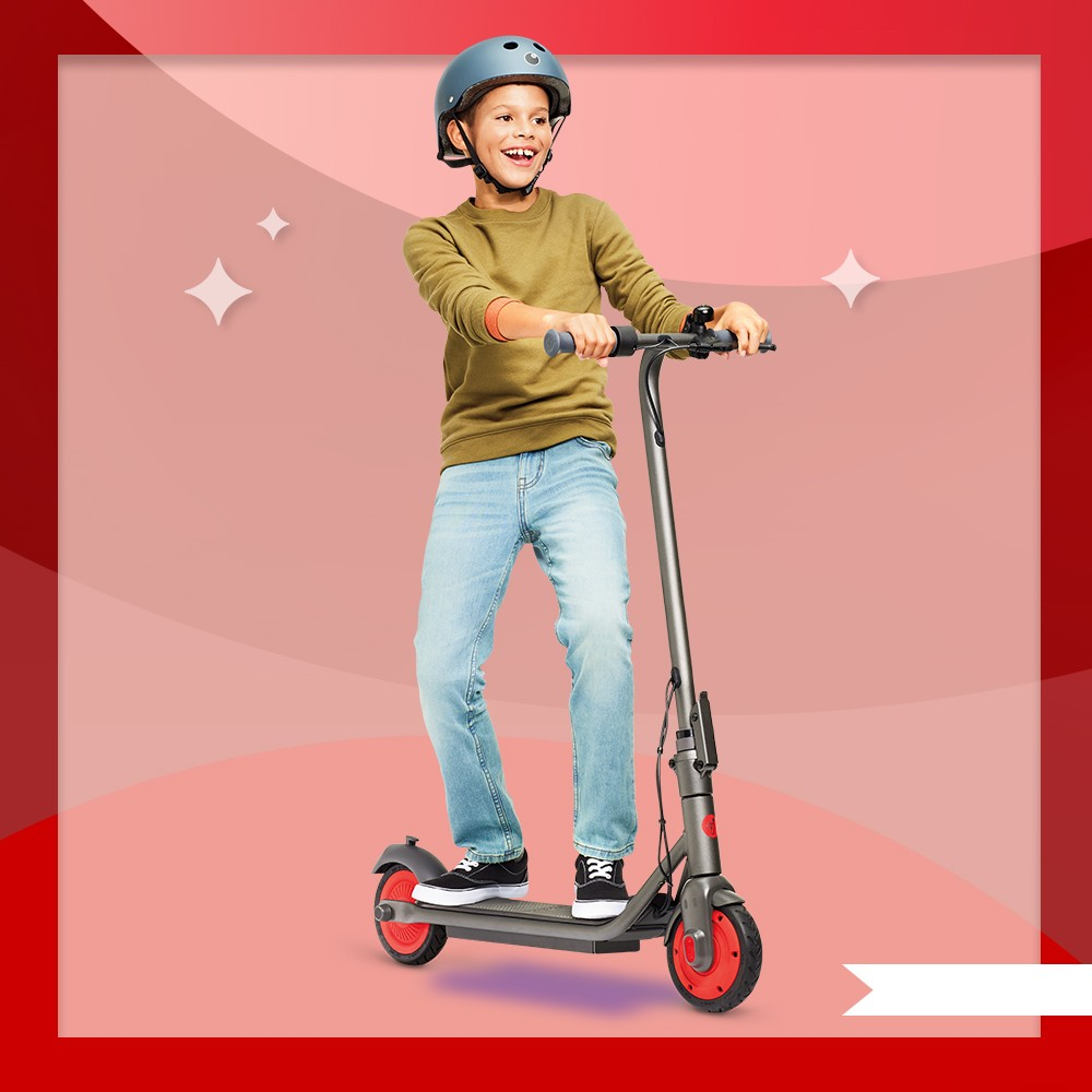 Segway C20 Kids' Electric Kick Scooter - Gray