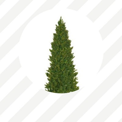 Marvelous Target Christmas Tree Storage Part - 14: Trees Under $100