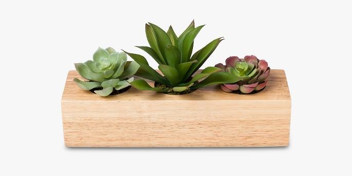 Faux Succulent Plants in Wood Pot - Project 62™