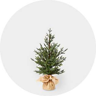 Under 4 Christmas Trees Target